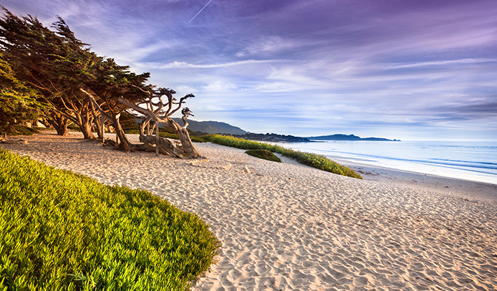Carmel beach at California
