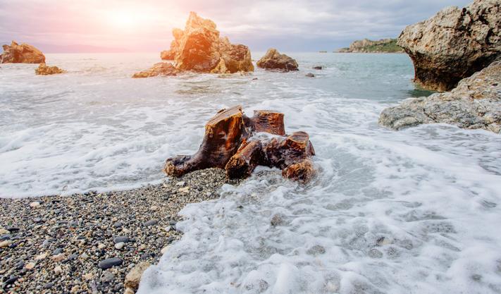 Pebble Beach at California